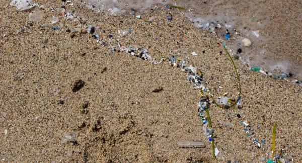 Microplastics in the Mediterran Sea